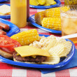 Cheeseburger on a picnic table — Stock Photo #11404478