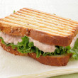 Grilled tuna sandwich on a napkin — Stock Photo