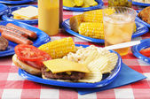 Cheeseburger on a picnic table — Stock Photo