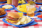 Summer picnic feast — Stock Photo