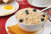 Whole grain rice and nilk with blueberries — Stock Photo
