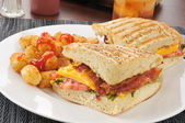 BLT Panini — Stock Photo