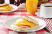Ham and egg muffin — Stock Photo