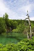 Plitvice gölleri milli parkı — Stok fotoğraf