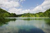 Landscape of the Plitvice Lakes, Croatia — Stock Photo