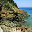 Stock Photo: The beach of the island of Elba