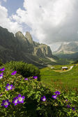 Dolomites peyzaj — Stok fotoğraf