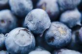 Fresh blueberries closeup .texture bluenerry. selective focus — Stock Photo