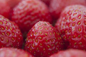 Fresh strawberries closeup .texture bluenerry, selective focus — Stock Photo