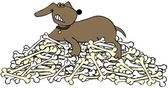 Dog protecting a pile of bones — Stock Photo