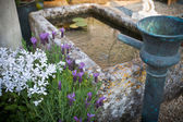 Garden with a little fontaine and pond — Stock Photo