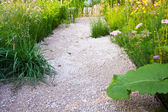 Walkway in a garden — Stock Photo