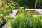 Garden with a pond — Stock Photo