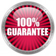 Stock Photo: 100 guarantee label