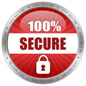 Secure icon — Stock Photo