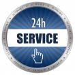 Stock Photo: Service icon