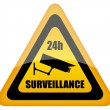 Vector video surveillance sign — Stock Vector #12011639