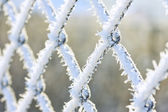 Hoar frost on chain link fence — Stock Photo
