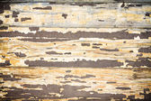Closeup of a peeling wooden door in grunge — ストック写真