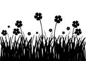 Flowers black and white — Stock Photo