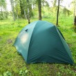 Stock Photo: Tourist tent on glade in wood
