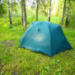 Tourist tent on glade in wood — Stock Photo