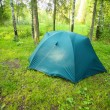 Tourist tent on glade in wood — Stock Photo #10996518