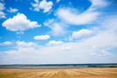 Landscape with field the river and cloudy sky — Stock Photo