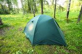 Namiot turystyczny na polanie w lesie — Zdjęcie stockowe