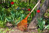 Garden flowers rake at tree — Stock Photo