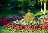Jardin de ville. — Photo