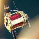 Big game fishing — Stock Photo #10766878