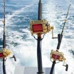 Big game fishing — Stock Photo #10766995