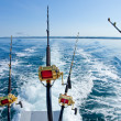 Big game fishing — Stock Photo #10766998