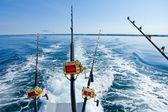 Pesca de altura — Foto de Stock