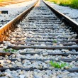 Railroad — Stock Photo #11037127