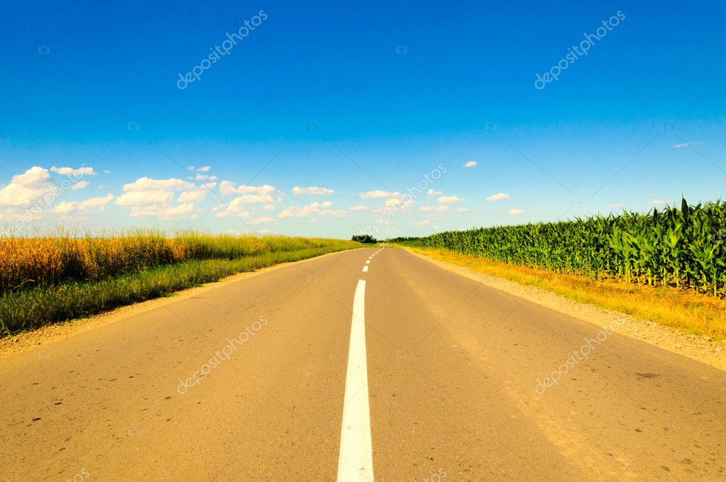 Road in the midle of the fields — Stock Photo #11204466