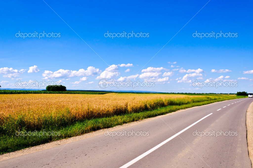 Field and clouds of Vojvodina region  Stock Photo #11204502