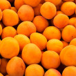 Real organic apricots — Stock Photo