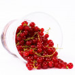 Glass of currant - Foto Stock