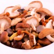 Mixture of mushrooms — Stock Photo