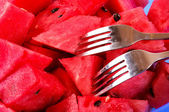 Watermelons slices — Stock Photo