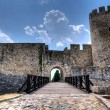 Belgrade fortress - Stock Photo