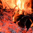 Wood fire — Stock Photo