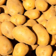 Stock Photo: Sunny potato