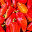 Fresh peppers — Stock Photo #12000827