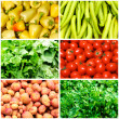 Vegetables collage — Stock Photo #12015118