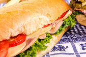 Sándwiches closeup — Foto de Stock