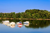 Sava river — Stock Photo