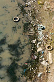 Water pollution — Stok fotoğraf